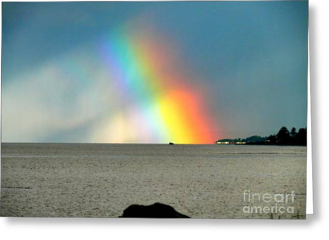 Seacape Greeting Cards - The Rainbows Edge Greeting Card by Gail Bridger