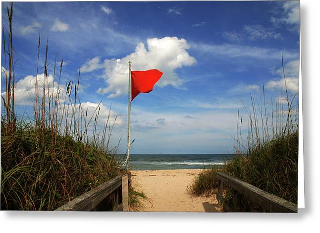 Sea Grass In The Sand Greeting Cards - The Red Flag Greeting Card by Susanne Van Hulst