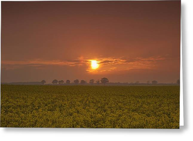 Foggy Day Greeting Cards - The Red Glow Of A Sunset Over A Field Greeting Card by John Short