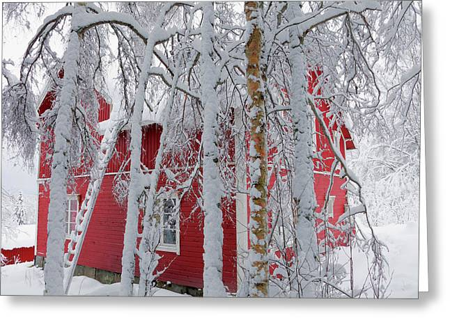 Snow-covered Landscape Greeting Cards - The red house Greeting Card by Intensivelight