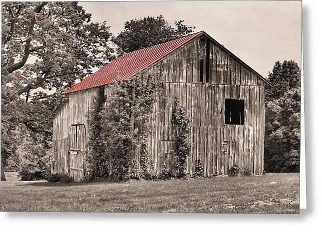 Rusty Tin Roof Greeting Cards - The Red Roof Greeting Card by JC Findley