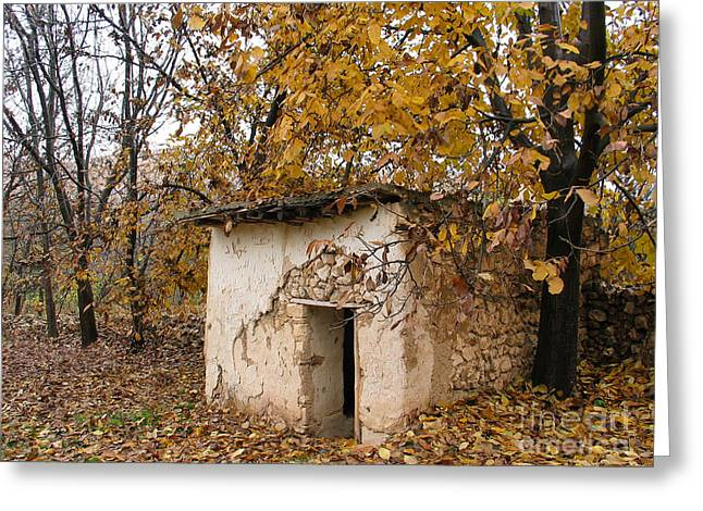 The Remote Autumn Hut Greeting Card by Issam Hajjar