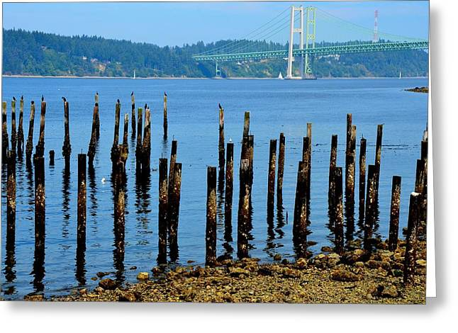 Sailboats Docked Greeting Cards - The Replacement Greeting Card by Mark Bowmer