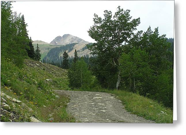 Mountain Road Pyrography Greeting Cards - The road ahead Greeting Card by FeVa  Fotos