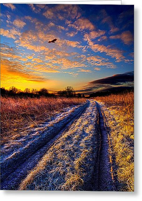 The Road Not Easily Taken Greeting Card by Phil Koch