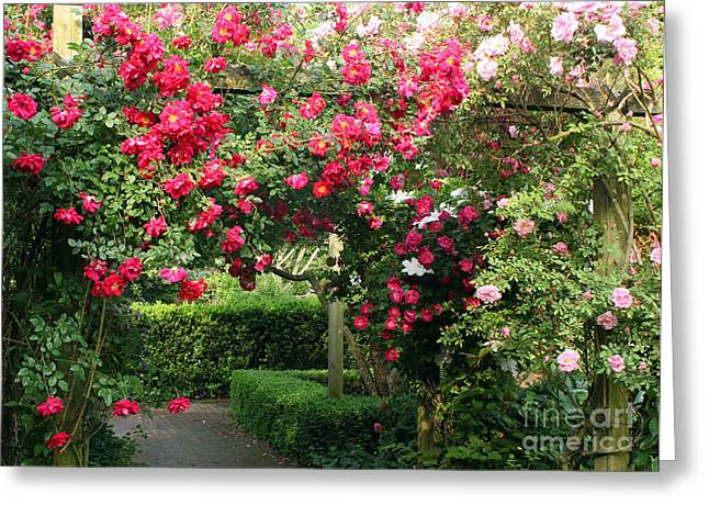 Elizabeth Chevalier Greeting Cards - The Rose Arbor Greeting Card by Elizabeth Chevalier