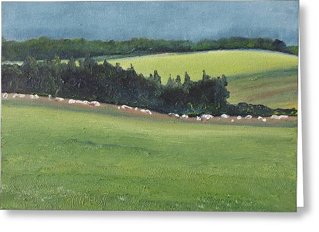 Francois Fournier Greeting Cards - The Row of sheep NDB Quebec Canada Greeting Card by Francois Fournier