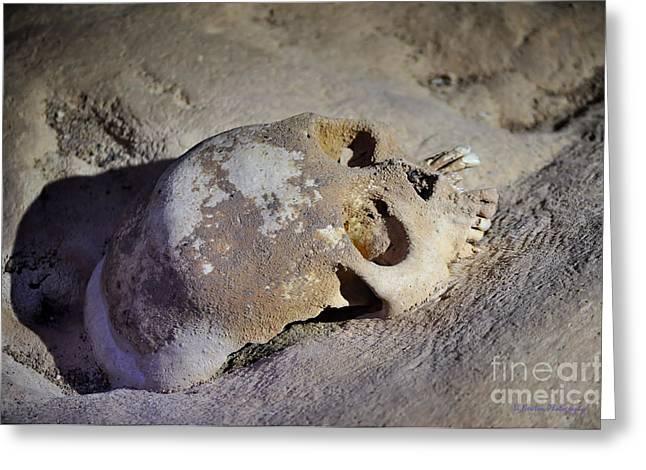 Caves Greeting Cards - The Sacrifice Greeting Card by Li Newton