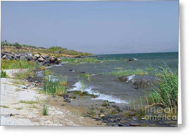 Loaf Of Bread Digital Greeting Cards - The Sea of Galilee Greeting Card by Eva Kaufman