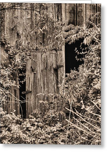 Overgrown Greeting Cards - The Secret Door Greeting Card by JC Findley