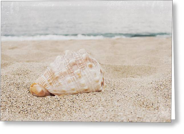 Beach Photograph Greeting Cards - The Secret Heart of Time Greeting Card by Sharon Mau