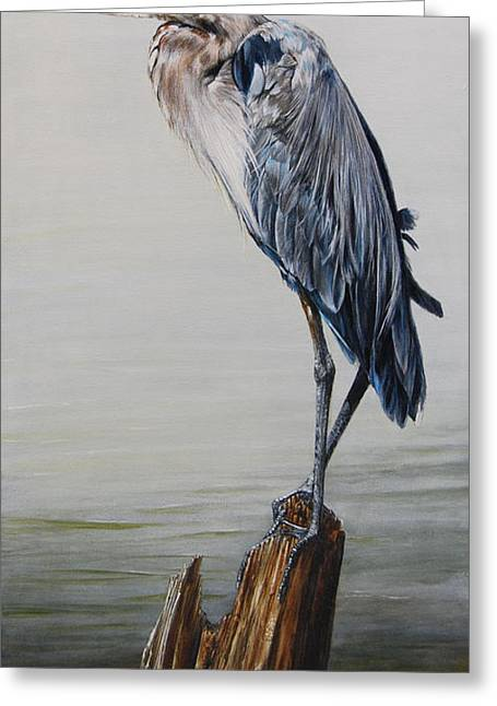 Great Blue Heron Greeting Cards - The Sentinel - Portrait of a Great Blue Heron Greeting Card by Rob Dreyer AFC
