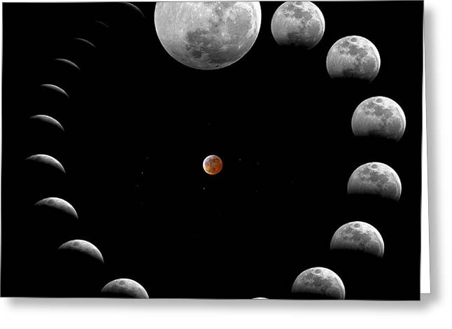 Timeline Greeting Cards - The Sequence Of A Total Lunar Eclipse Greeting Card by Miguel Claro