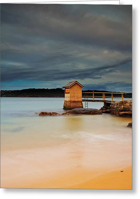 Boat Shed Greeting Cards - The Shed - Camp Cove  Greeting Card by Mark Lucey