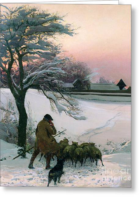Sunset; Evening; Winter; Snow; Sheep Greeting Cards - The Shepherd Greeting Card by EF Brewtnall