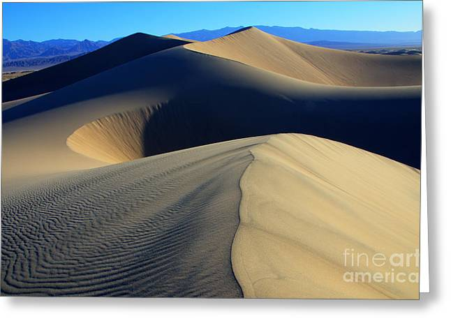 Mountains Of Sand Greeting Cards - The Silent Treatment Greeting Card by Bob Christopher