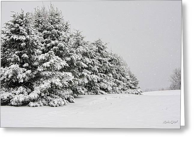 Nature Greeting Cards - The Simple Beauty of Winter Greeting Card by Linda Hall