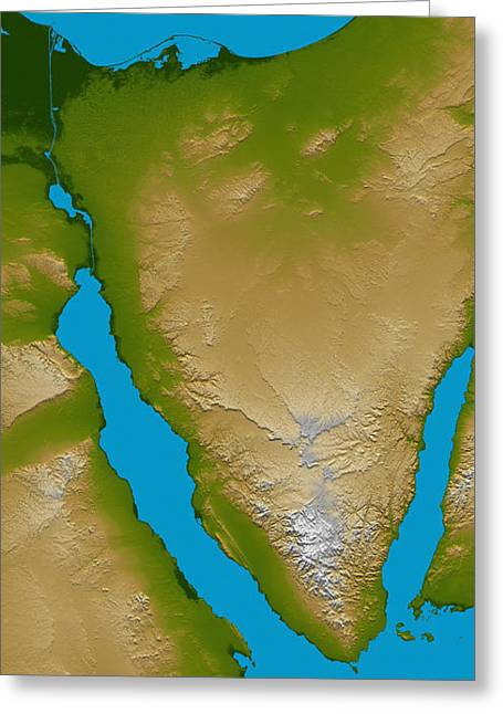 Relief Map Greeting Cards - The Sinai Peninsula Greeting Card by Stocktrek Images