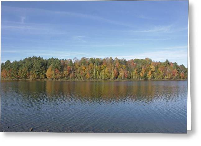 Foliage Greeting Cards - The Sky Embracing Vermont Foliage Greeting Card by Elijah Brook