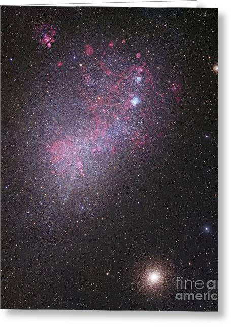 Small Magellanic Cloud Greeting Cards - The Small Magellanic Cloud, Ngc 292 Greeting Card by Robert Gendler