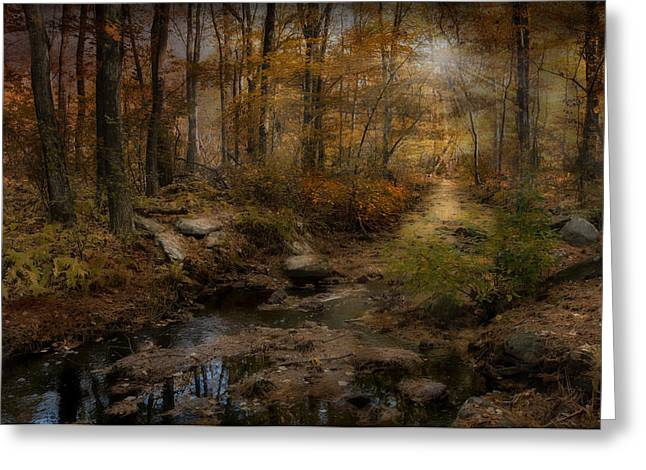 Respite Greeting Cards - The Sound of Silence Greeting Card by Robin-lee Vieira