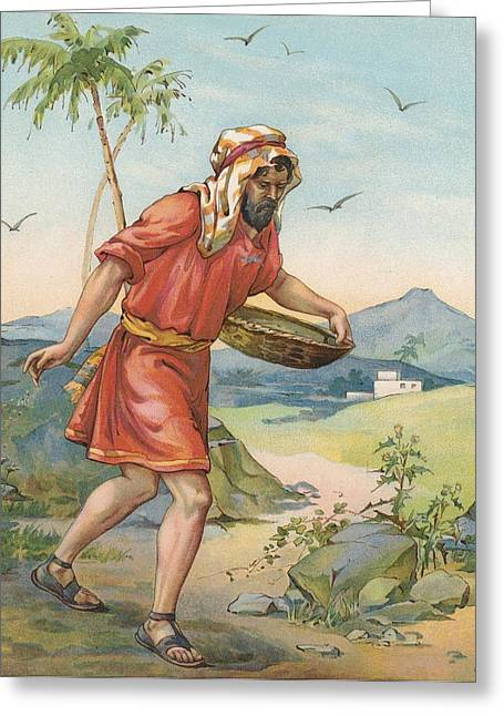 The Sower Greeting Card by Ambrose Dudley