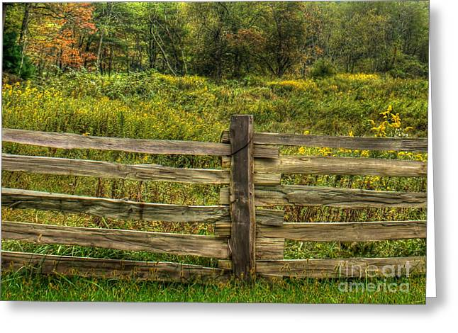 The Split Rail Meadow Greeting Card by Benanne Stiens