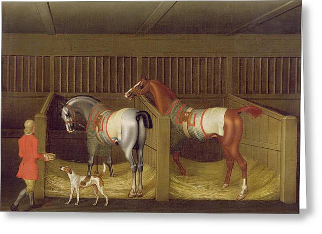 Feeding Greeting Cards - The Stables and Two Famous Running Horses belonging to His Grace - the Duke of Bolton Greeting Card by James Seymour