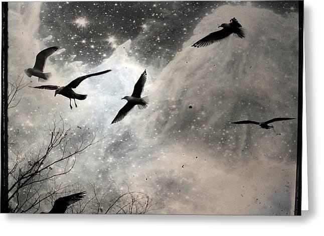 Flying Seagull Greeting Cards - The Stars Greeting Card by Gothicolors Donna Snyder
