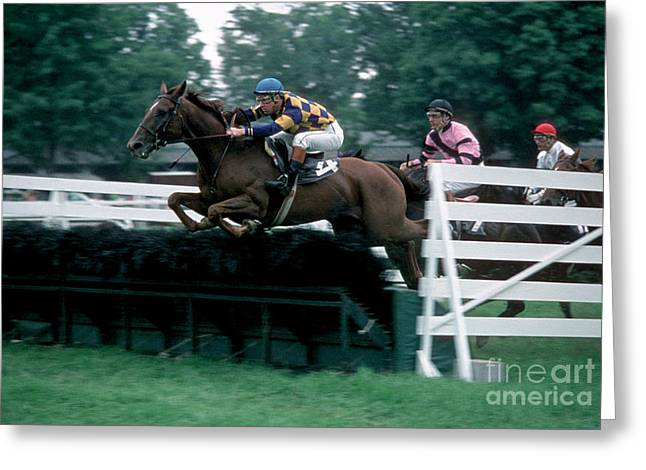 Race Horse Greeting Cards - The Steeplechase Greeting Card by Marc Bittan