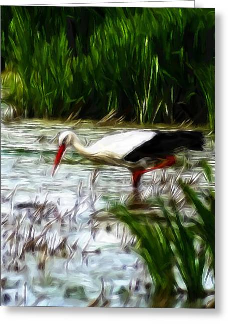 Amphibians Pastels Greeting Cards - The Stork Greeting Card by Stefan Kuhn