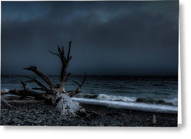 Foggy Beach Greeting Cards - The Storm Greeting Card by Matt Dobson