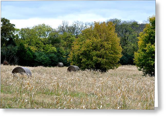 Tennessee Hay Bales Greeting Cards - The Sun Is Still Shining Greeting Card by Jan Amiss Photography