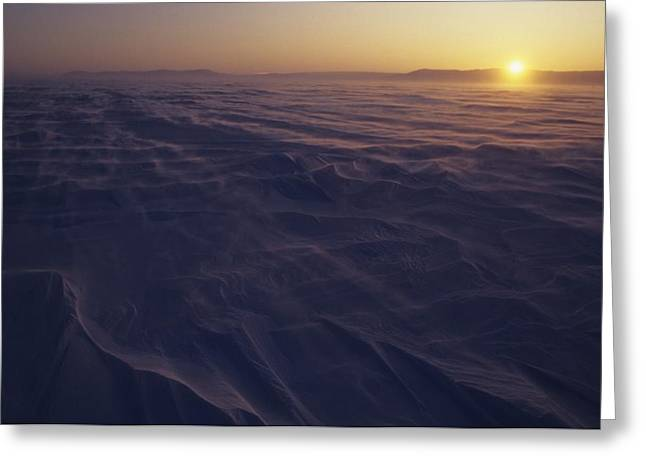 Sunset Scenes. Greeting Cards - The Sun Sets Over An Arctic Landscape Greeting Card by Paul Nicklen