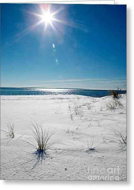 Falmouth Massachusetts Greeting Cards - The sun shines down on freshly fallen snow on Bristol Beach Greeting Card by Matt Suess