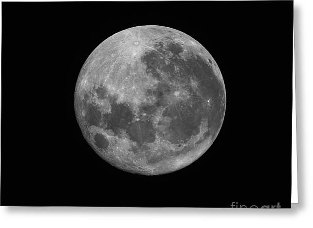 Copernicus Greeting Cards - The Supermoon Of March 19, 2011 Greeting Card by Phillip Jones