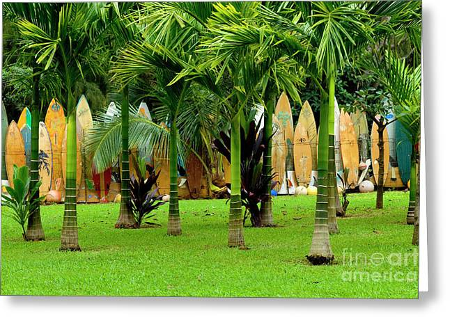 Board Fence Greeting Cards - The Surfboard Fence Greeting Card by Bob Christopher