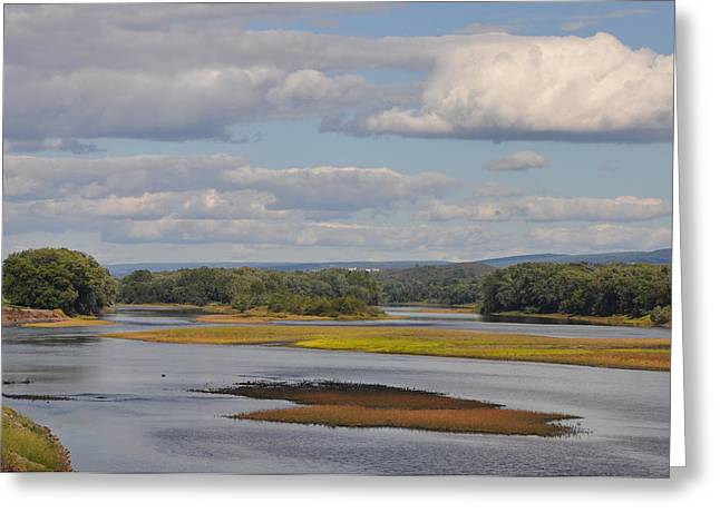 Kingston Digital Greeting Cards - The Susquehanna River at Kingston Pa. Greeting Card by Bill Cannon