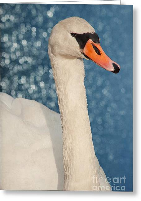 Bokeh Mixed Media Greeting Cards - The swan Greeting Card by Angela Doelling AD DESIGN Photo and PhotoArt