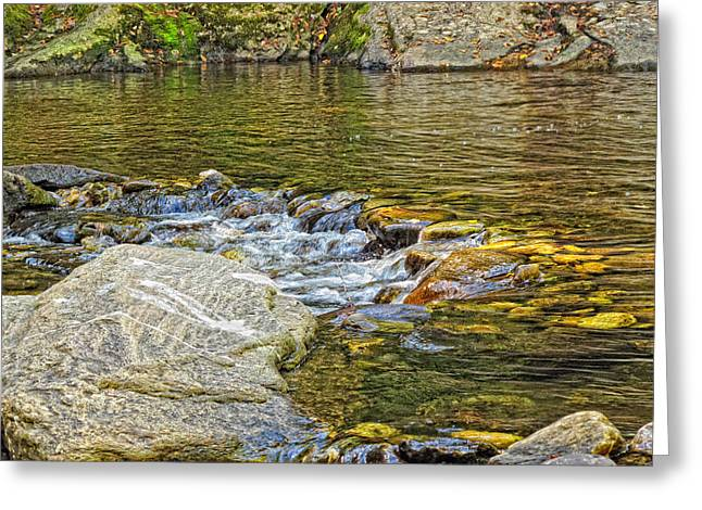 Swimming Hole Greeting Cards - The Swimming Hole Greeting Card by Linda Pulvermacher