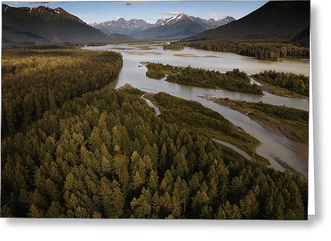 Tongass Greeting Cards - The Taku River Is A Braided River Greeting Card by Melissa Farlow