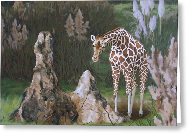 Sandra Chase Greeting Cards - The Termite Mounds Greeting Card by Sandra Chase