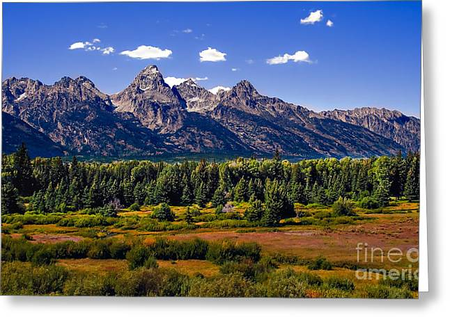 Haybale Greeting Cards - The Tetons II Greeting Card by Robert Bales