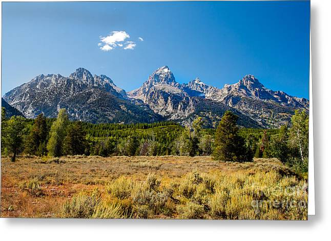 Outlook Greeting Cards - The Tetons Mountains Greeting Card by Robert Bales