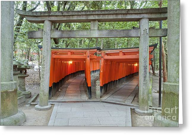 Kyoto Greeting Cards - The Thousand Gates Greeting Card by Rob Tilley