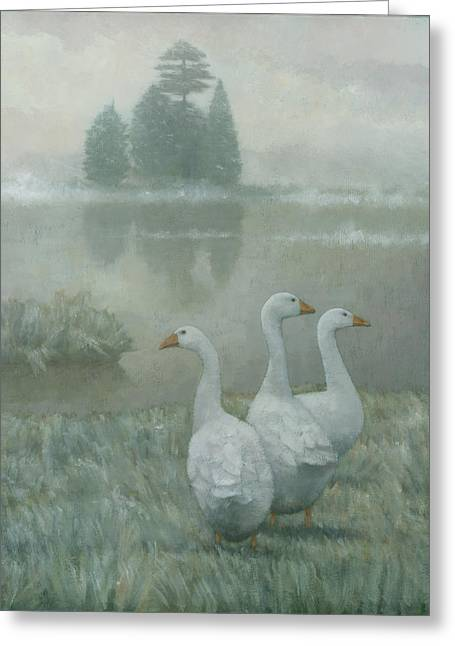 Swans... Greeting Cards - The Three Geese Greeting Card by Steve Mitchell