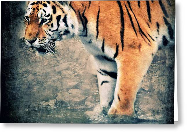 Tigers Greeting Cards - The Tiger Greeting Card by Angela Doelling AD DESIGN Photo and PhotoArt