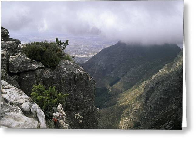 Cape Town Greeting Cards - The Top Of Table Mountain, Looking Greeting Card by Stacy Gold
