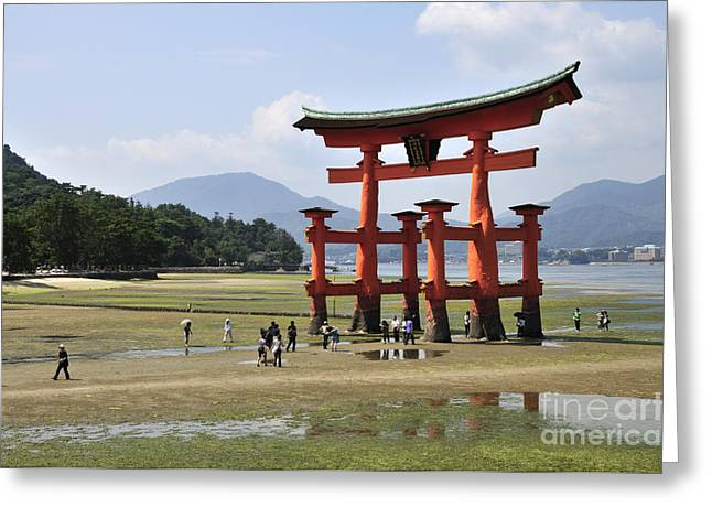 Torii Greeting Cards - The Torii at low tide at Itsukushima Shrine Miyajima Japan  Greeting Card by Andy Smy