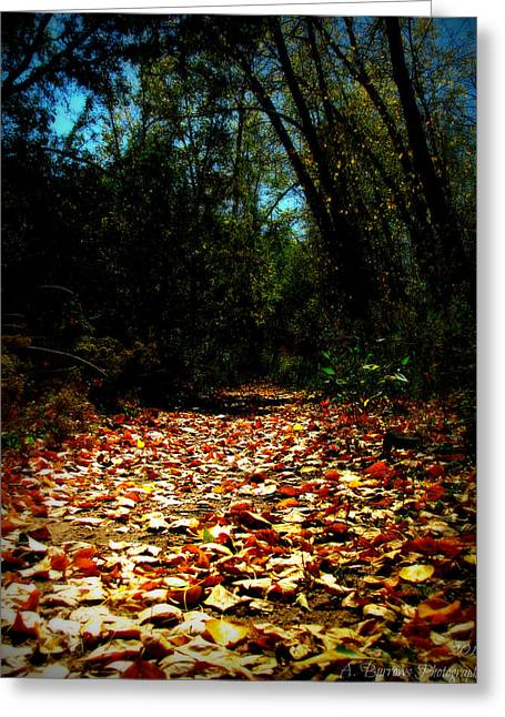 Prescott Greeting Cards - The Trail Ahead Greeting Card by Aaron Burrows